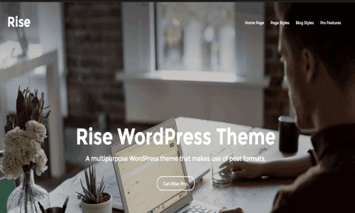 rise theme wordpress con opción de pago