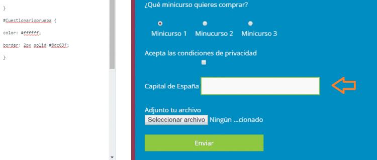 personalizcion de estilos del formulario